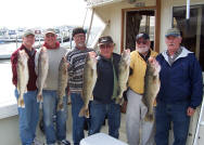 "Catch big Lake Erie walleye aboard ""Pooh Bear"""