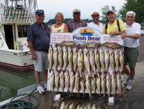"Another Lake Erie Ohio walleye limit catch, aboard the charter boat ""Pooh Bear"""